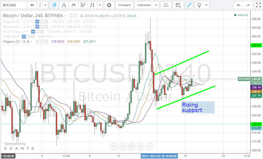 Bitcoin Price Technical Analysis for 19/2/2015 – Rising Support